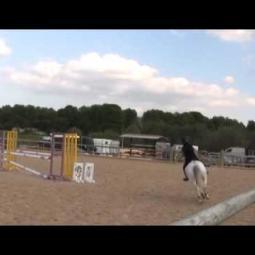 Embedded thumbnail for Nedobrovolný pád dítěte z pony